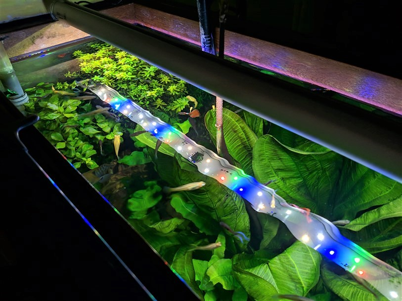 Easy River LED per acquario