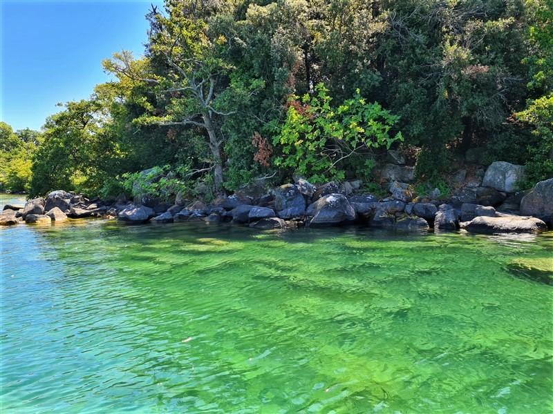 Le acque dell'isola Bisentina nel lago di Bolsena