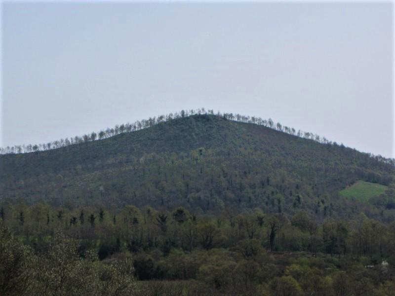 Monte Landro, San Lorenzo Nuovo