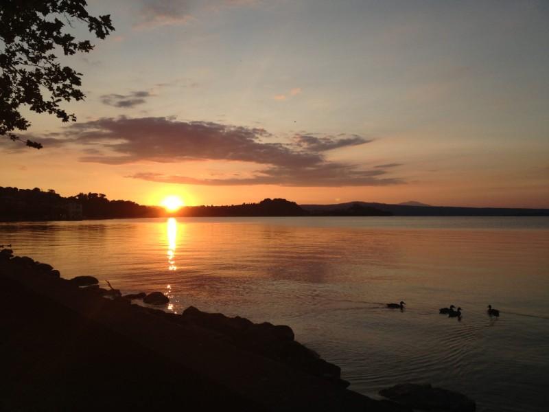 Il comune di marta vt tra pesca e turismo sul lago di for Disegni casa sul lago con vista sul lago